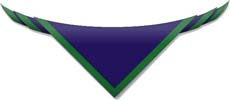 1st Eaglescliffe Scout Group